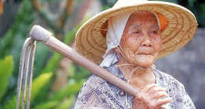 http://www.bluezones.com/expedition/okinawa-2/